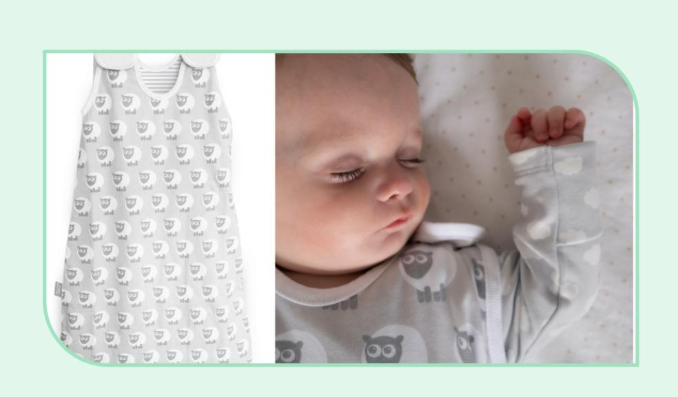 Picture of the new ewan the sheep baby grow