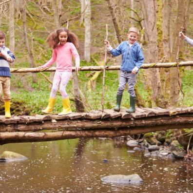 Picture of children exploring in the woods