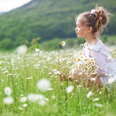Picture of a little girl in a field of flowers